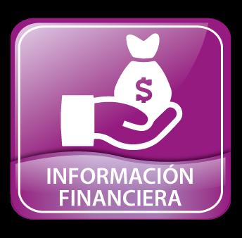INFROMACION-FINANCIERA
